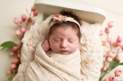 Regina Newborn Photographer