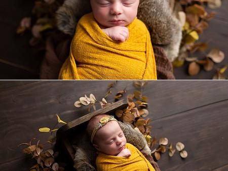 Autumn Newborn Photos Regina
