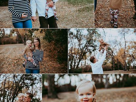 More fall photos!