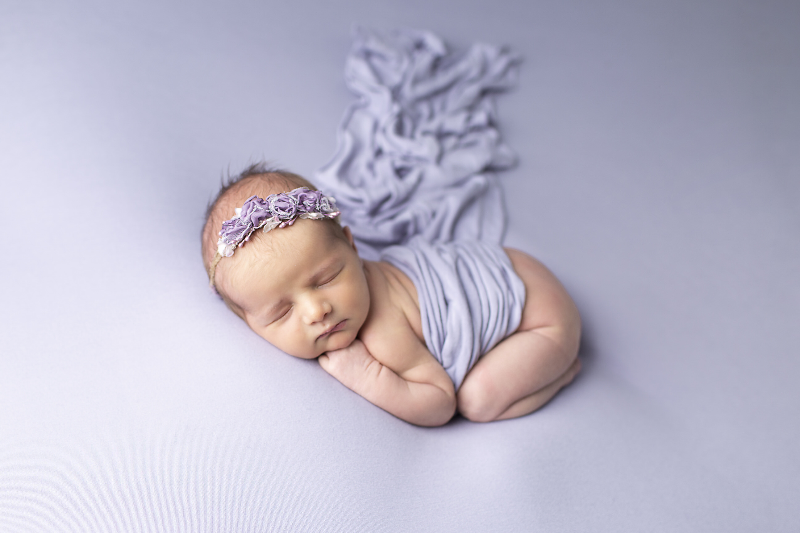 Purple newborn photos