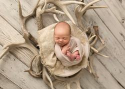 Newborn Photographer Regina