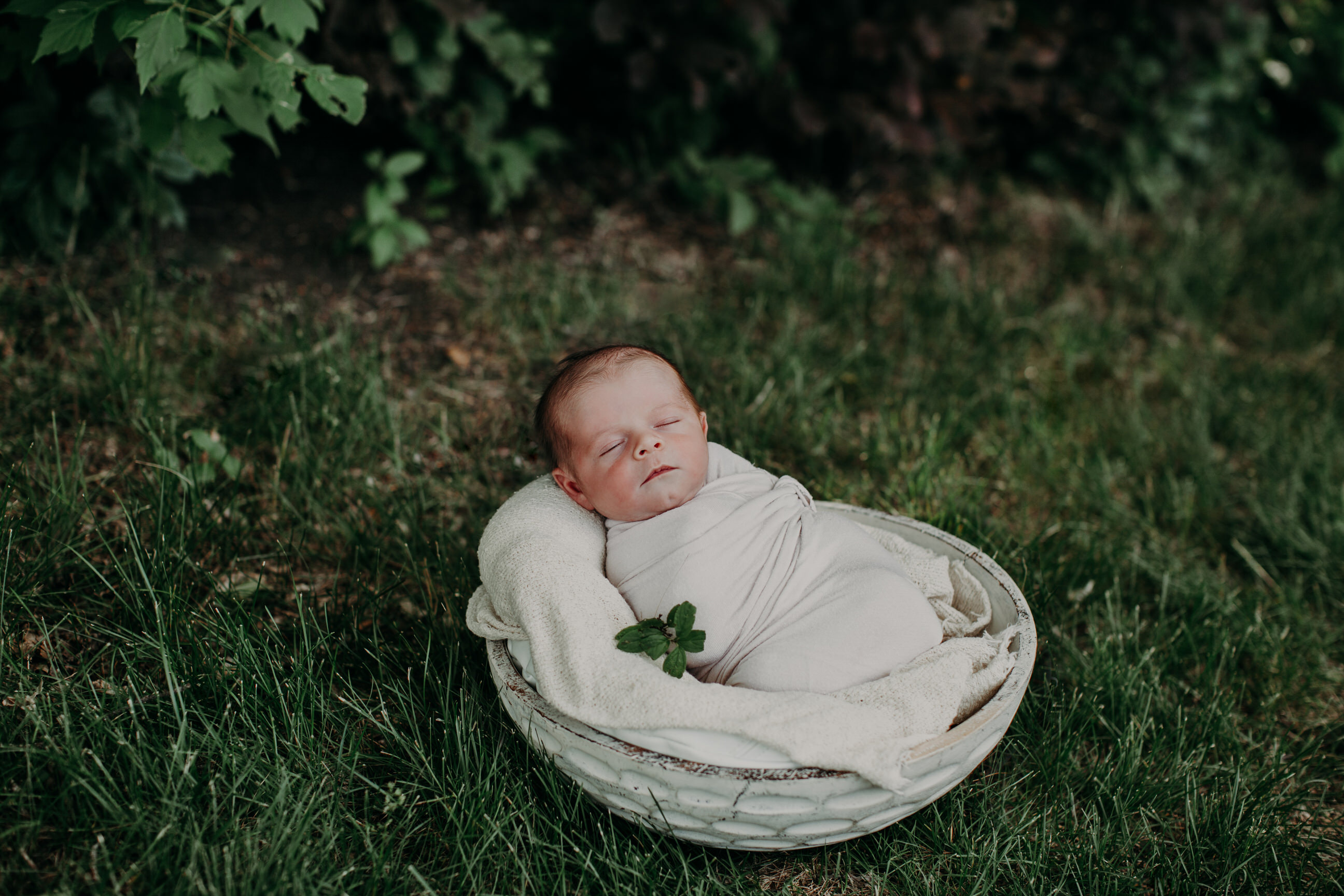 Outdoor Newborn Photos Regina
