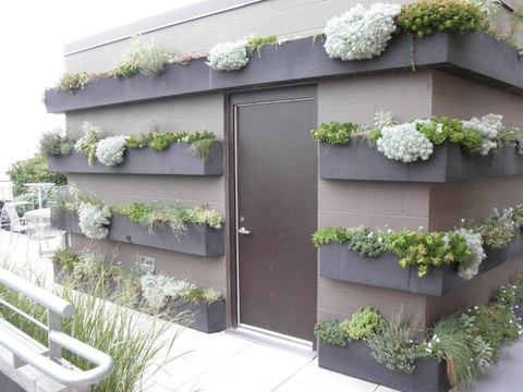 Waterfront Plaza Green Roof Planters