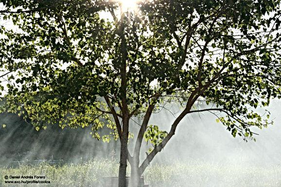 WEERBERICHT: Fris, zonnig maar droog
