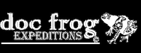 Doc Frog