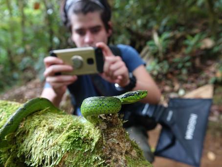 Guatemala Herping Expedition 2018