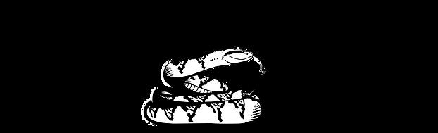 Logo The Black headed bushmaster conserv