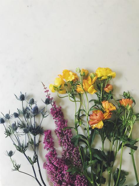 My Growing Love of Flowers