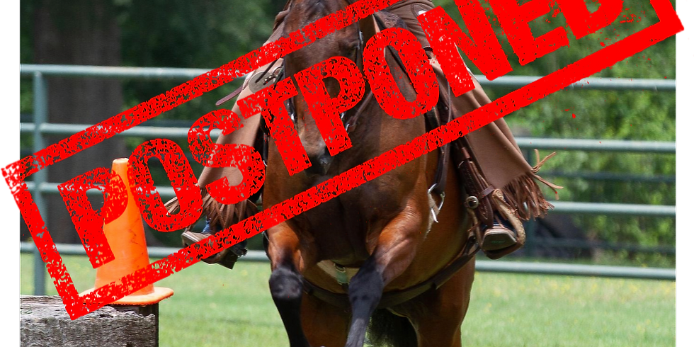 POSTPONED: Working Equitation Lessons with Judge Tarrin Warren