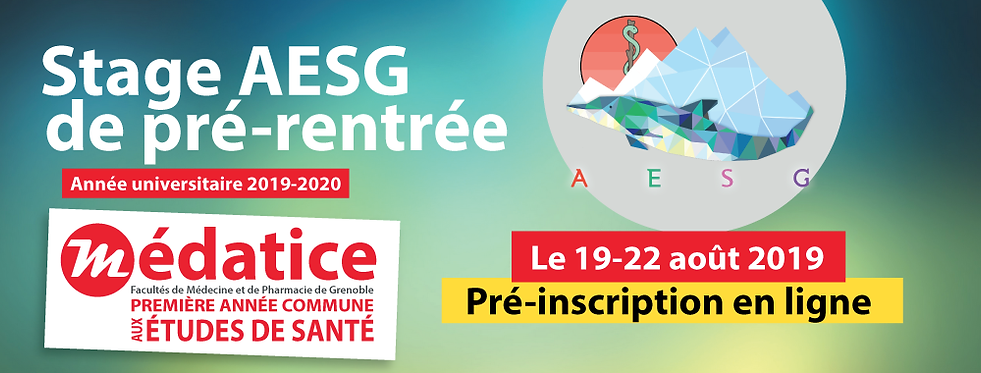 banner_aesg_stage_2019_01noclick.png