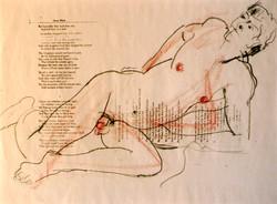 Nude over Oscar Wilde Text 1995
