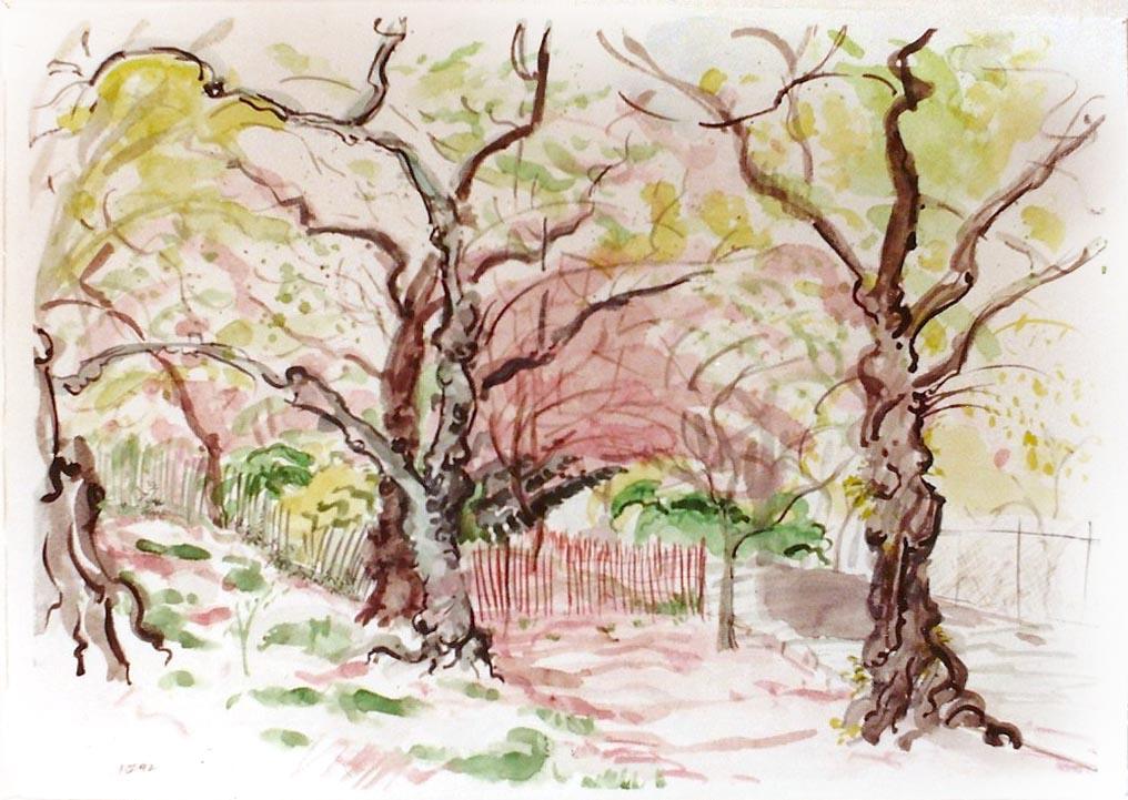 Central Park in Spring 1998