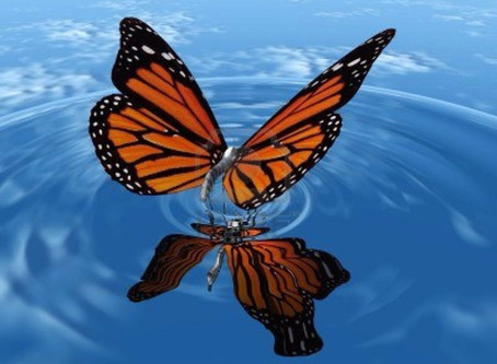 The Butterfly Effect: The Changing Winds on the SIEM Market