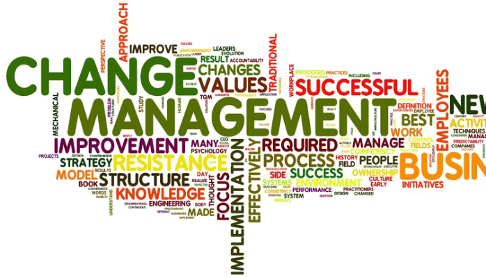 Change Management and Empowerment of Teams