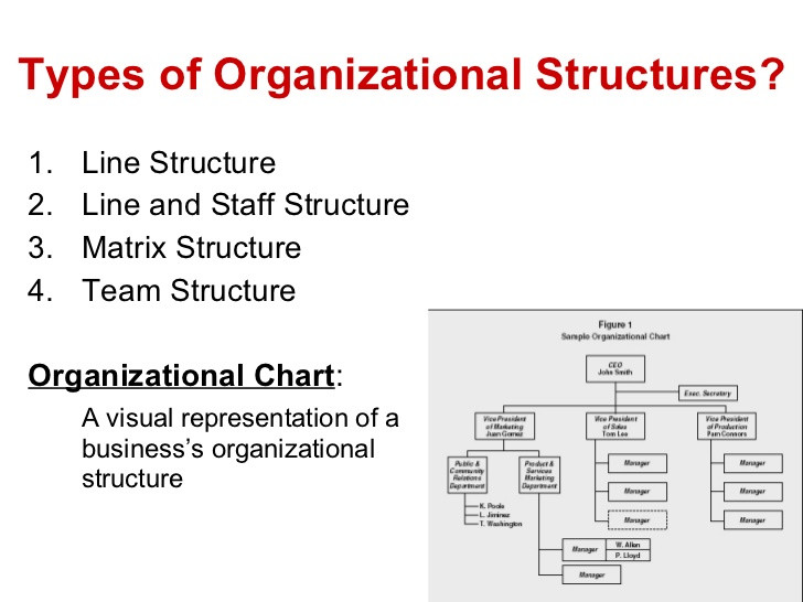Business Analysis Structure of Organizations