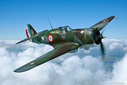 Curtiss Hawk 75 - Pic1.jpg
