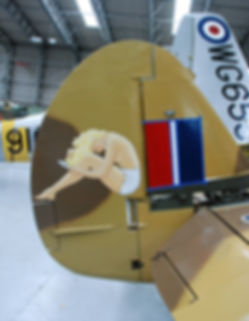 P-40F Nose & Tail Art + Insignia