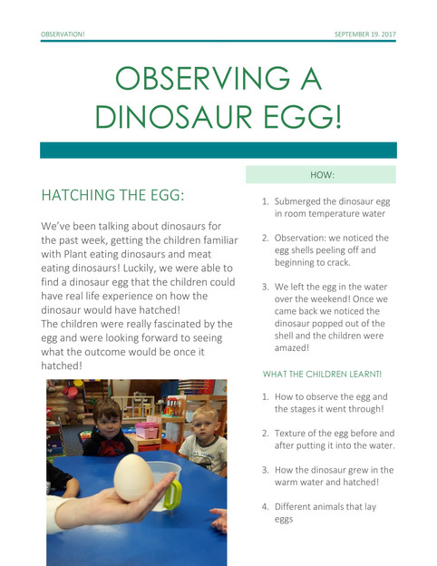 OBSERVING A DINOSAUR EGG! See how creative the kids are!