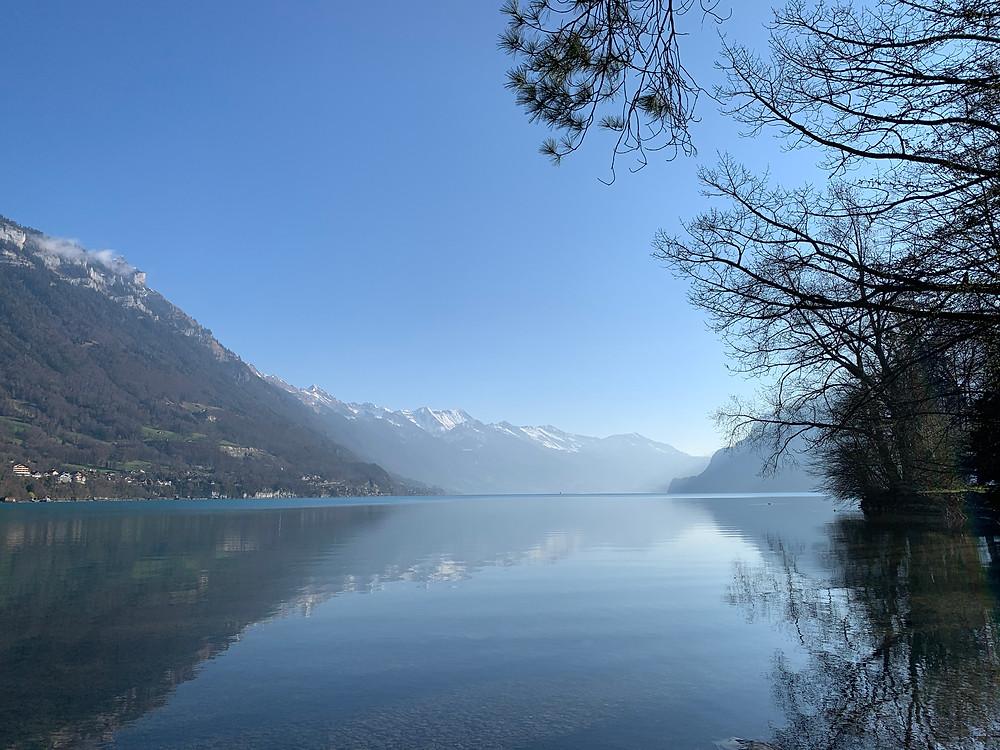eine tolle Aussicht mit einer Tasse Kaffee am Morgen, direkt vor dem Wohnmobil und am See. Ein Träumchen