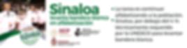 BannerL 347X91 NOTICIAS DIGITALES Alfabe