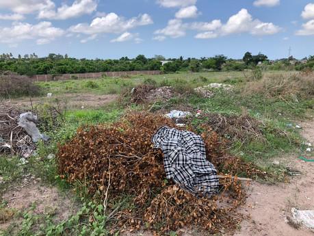 Llama Ecología a denunciar quemas de basura, aplicarán sanciones: Mateo Palomares
