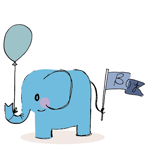 New Baby boy card - elephant with a flag