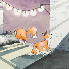 foxes at night