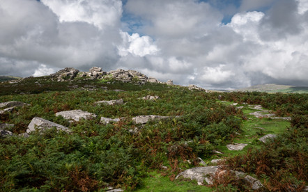 Green Grass Road (Ref: 6372)
