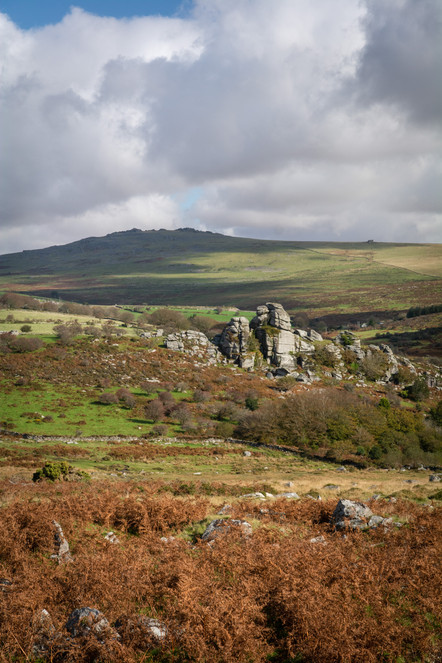 Vixen Tor in Autumn - Portrait