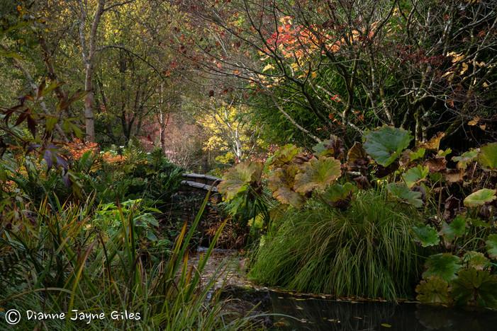 Enchanted Garden (Ref_ 2878)