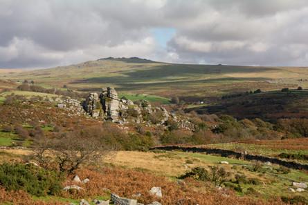 Vixen Tor in Autumn - Landscape