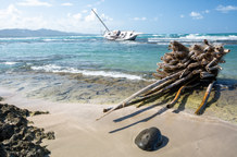 Shipwreck - Landscape