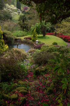 Lukesland Gardens(Ref_ 9670)