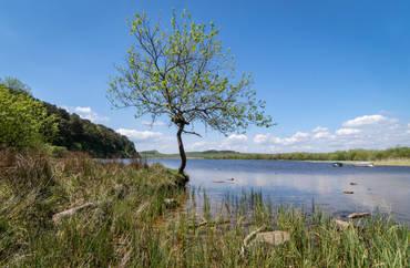 Crag Lough (Ref:  1167)