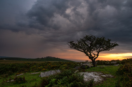 Stormy Dartmoor Sunset (Ref: 5637)
