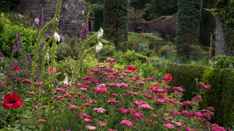 The Garden House (Ref_ 0270)