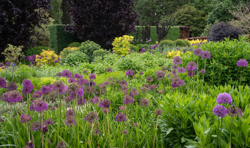 The Hot Garden in Spring (Ref: 2149)