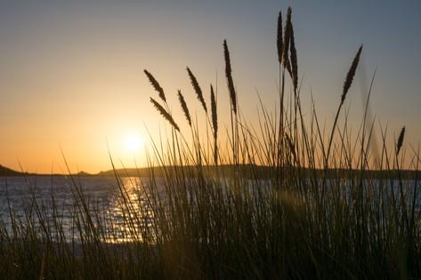 Sunrise among the Dunes