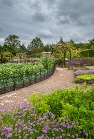 The Med Garden (Ref_ 2253)