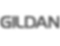icon_gildan-130x100.png