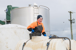 White River Dairies - Dairy Operation-9620