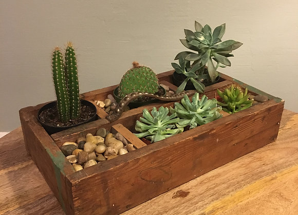 Tool Box Garden
