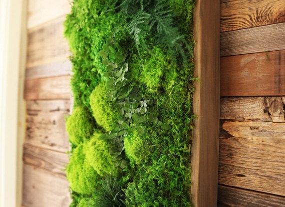 """40""""x18""""Living Moss Wall"""
