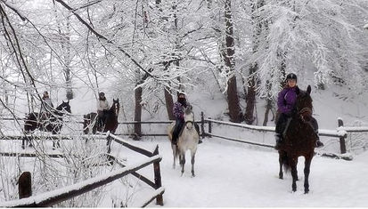 ranczo zima.jpg