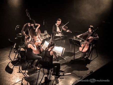 Sincere Flattery: An interview With Ian Anderson and Stefan Hadjiev Wooden Elephant