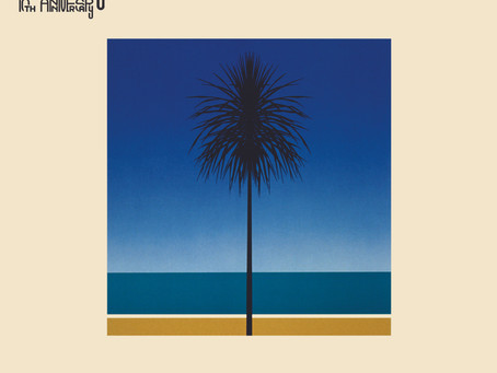 Crest Of A Wave: A Listen to The English Riviera - 10th Anniversary Edition By Metronomy