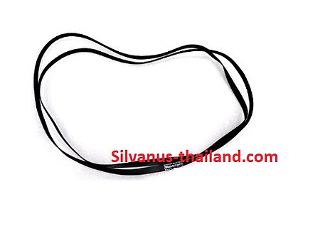 29008482000D BELT,FLAT,0.250,SEMI-STRETCH