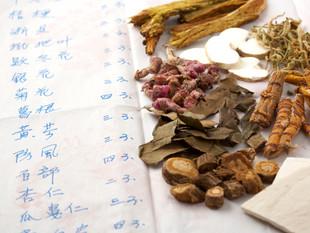 Avances Médicos y Yangsheng en las dinastias Song-yuan