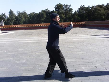 Zhan Zhuang y las artes Marciales