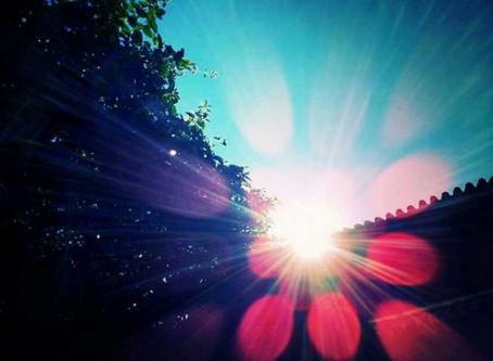 El Sol y la vida II